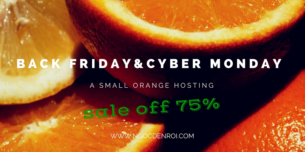 A Small Orange giam gia 75% hosting