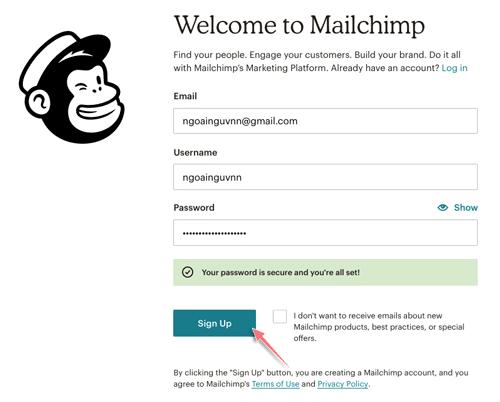 hướng dẫn đăng ký tài khoản mailchimp