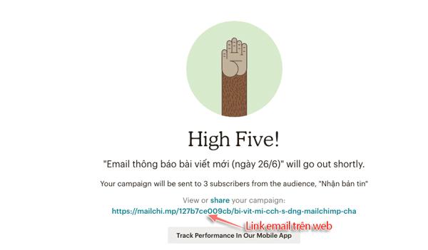 gửi mail thành công