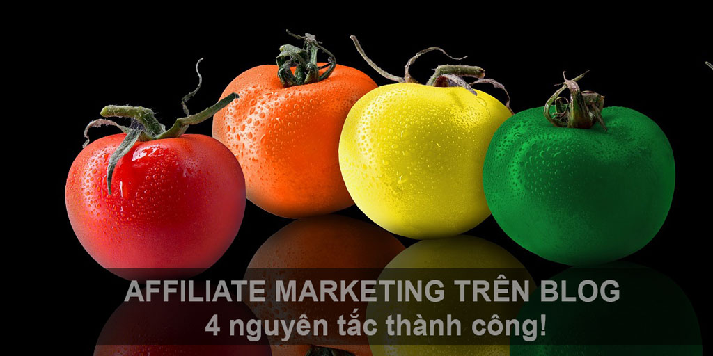 affiliate maketing trên blog