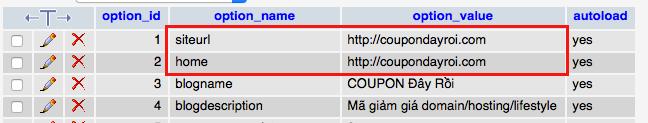 cách sửa domain trong database