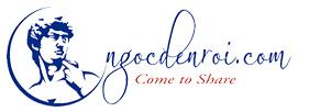 logo-ngocdenroidotcom