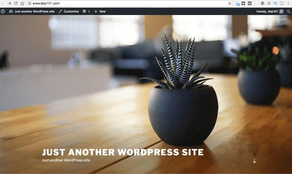 Cai WordPress trong panel cua Dreamost 06