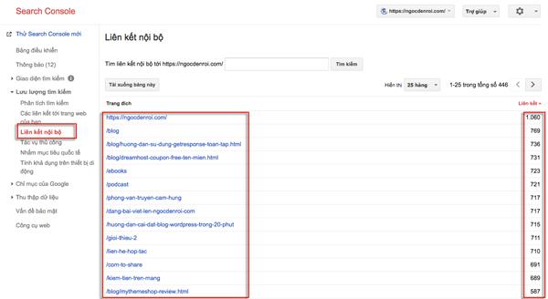 cach kiem tra internal link trong google conselo