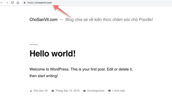cài đặt blog thành công